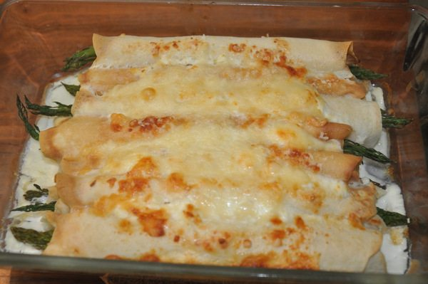סדנת בישול צמחוני
